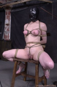 Like the bondage spread eagle clamped nipples pounding! will