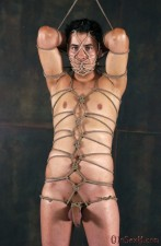 Cock Rope Torture